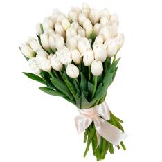 49 белых тюльпанов фото