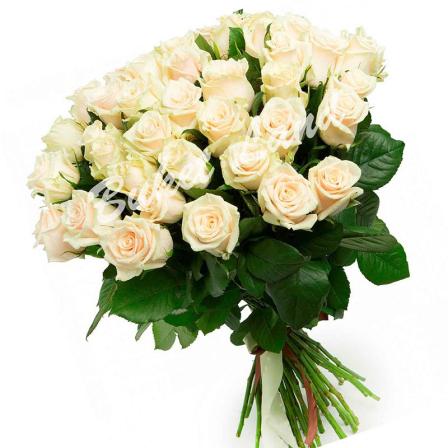 51 бежевая роза Талея 60 см