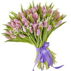 51 фиолетовый тюльпан фото
