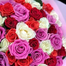 51 троянда мікс 50 см фото