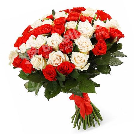 51 роза микс «красно-белая» 60 см