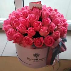 51 розовая роза в шляпной коробке фото
