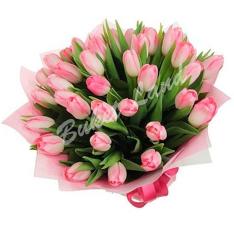 51 розовый тюльпан фото