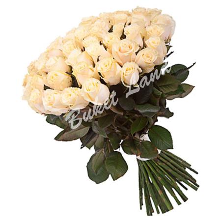 59 белых роз Аваланч 60 см