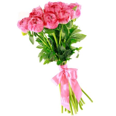 9 розовых пионов фото