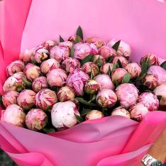 35 розовых пионов фото
