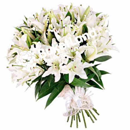 Bouquet of 19 lilies photo