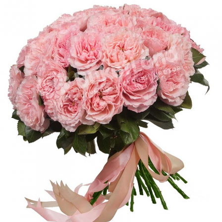 Bouquet of 35 pion-shaped roses photo