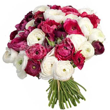 Bouquet of 45 ranuncles photo
