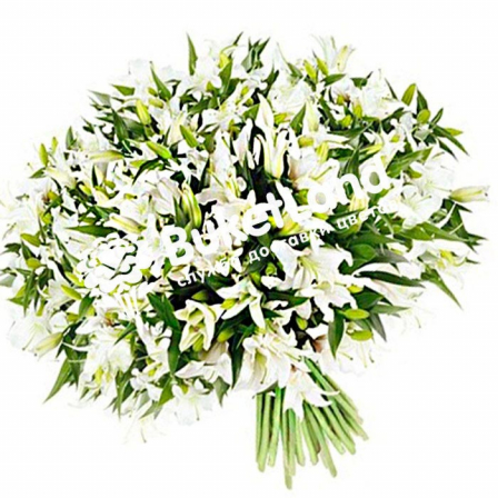 Bouquet of 49 lilies photo
