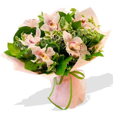Букет из 7 орхидей фото
