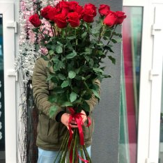 21 червона голландська Роза 140 см фото
