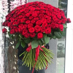 301 МЕТРОВАЯ красная роза  фото