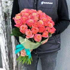 33 розы Мисс Пигги фото