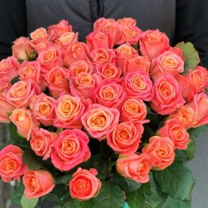 41 roses Miss Piggy photo