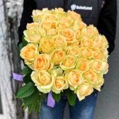41 роза Пич Аваланч фото