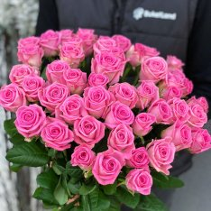 51 роза Аква фото