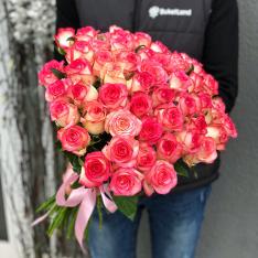 51 roses Jumilia photo