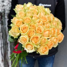 51 roses Peach Avalanche photo