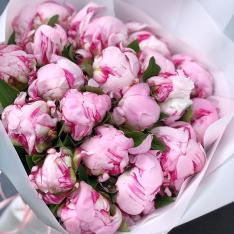 15 рожевих півоній фото