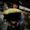 101 белая роза 1 метр фото