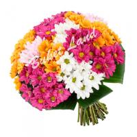 Какие Цветы Дарить на 1 Сентября Учителю?