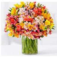 Экзотические цветы: эустомы, стрелиции, альстромерии
