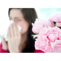 Flower allergy: what bouquet to give?