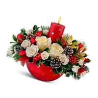 Зимние Цветы: Какие Цветы Дарить Зимой?
