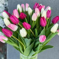 Тюльпан в ассортименте фото