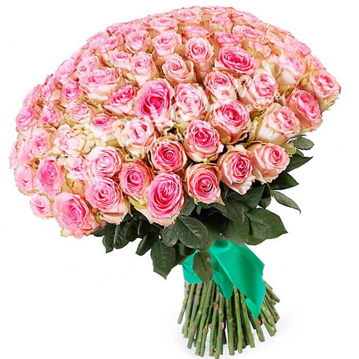 101 эквадорская роза 80 см в ассортименте