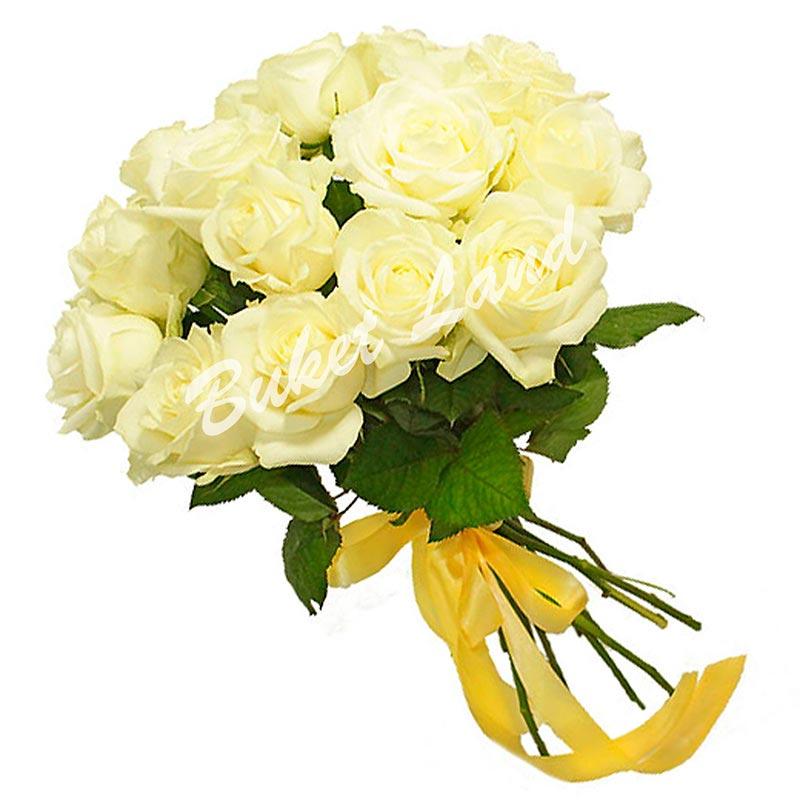 15 белых роз Аваланч 60 см