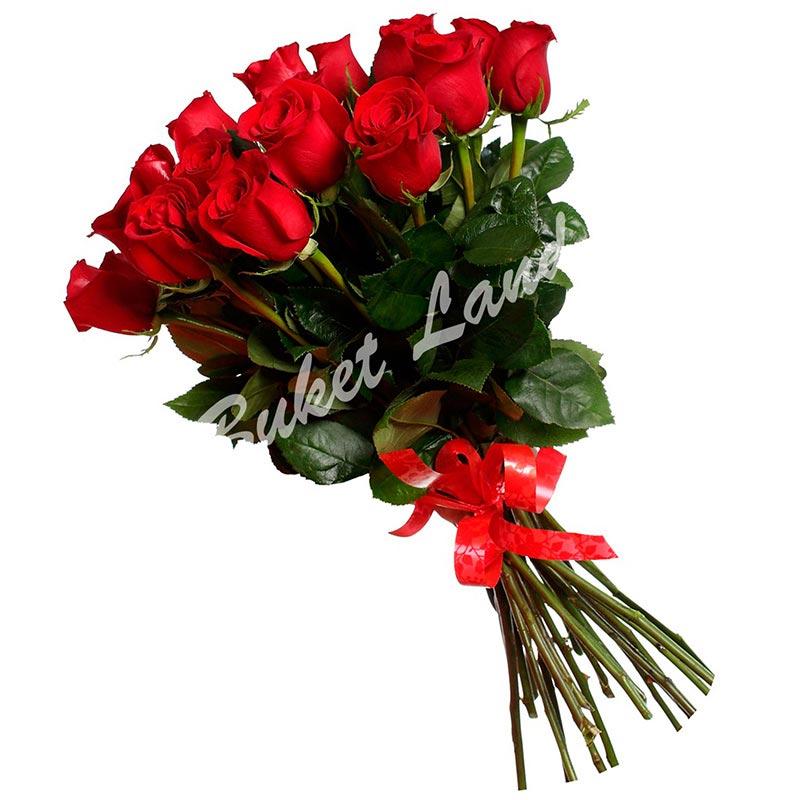 17 красных голландских роз