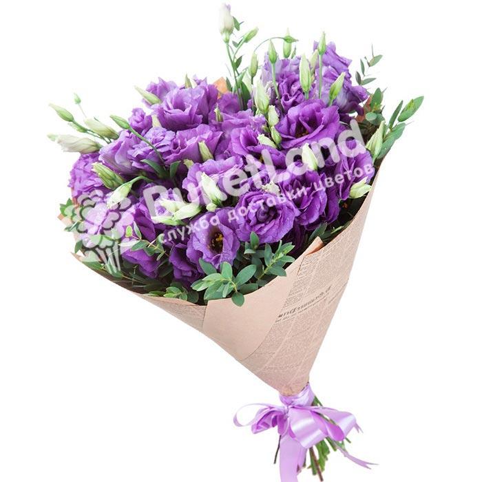 19 фиолетовых эустом