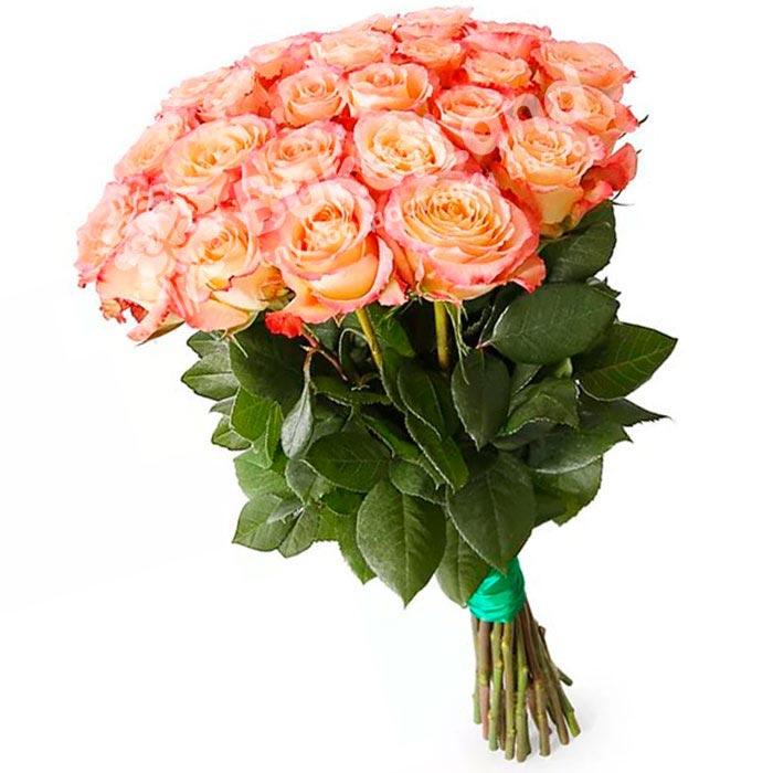 25 эквадорских роз 60 см в ассортименте