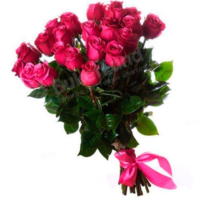 25 эквадорских роз 80 см в ассортименте