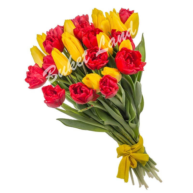 29 тюльпанов микс 5