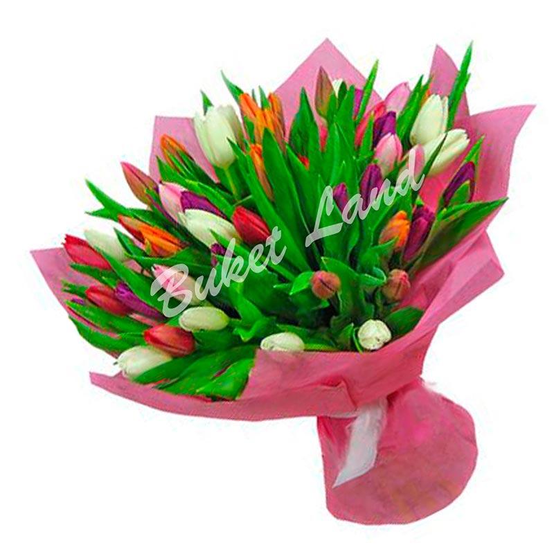 29 тюльпанов микс 6