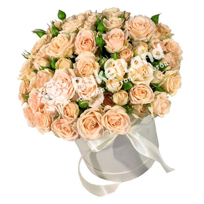 31 бежевая роза спрей в шляпной коробке