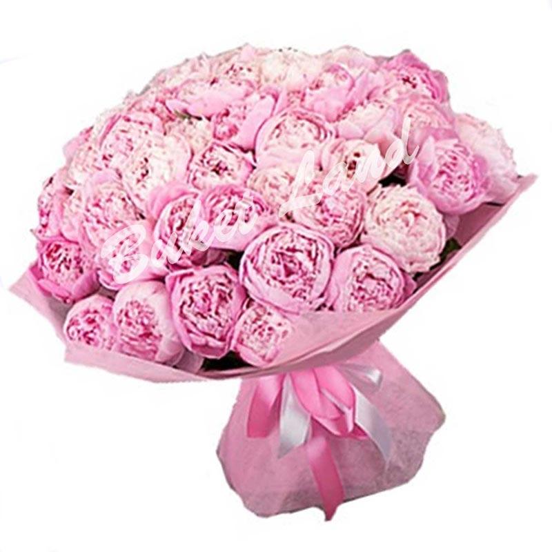 39 розовых пионов