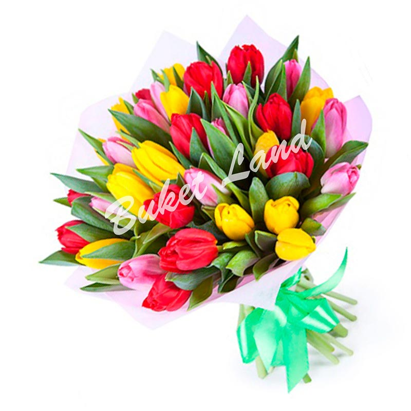 39 тюльпанов микс