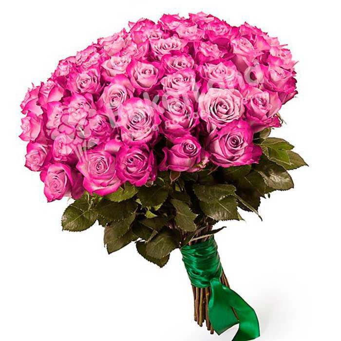 49 эквадорских роз 60 см в ассортименте