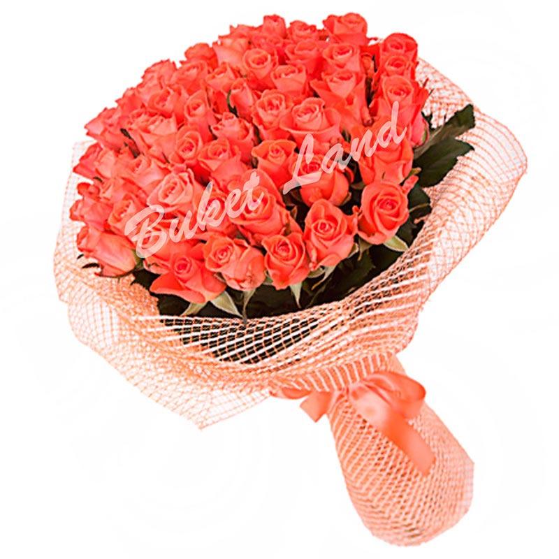 51 коралловая роза Вау 60 см