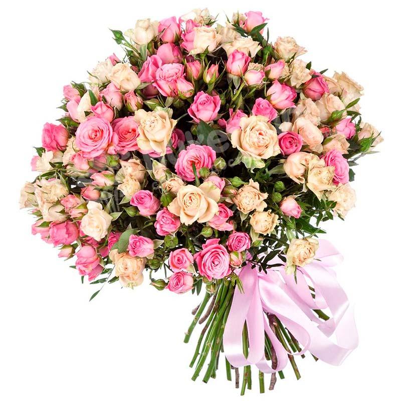 51 кустовая роза бежево-розовая