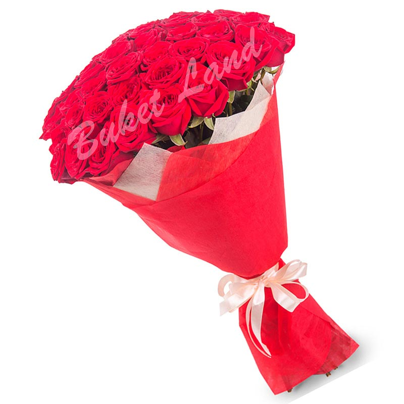 59 красных роз Гран При 60 см
