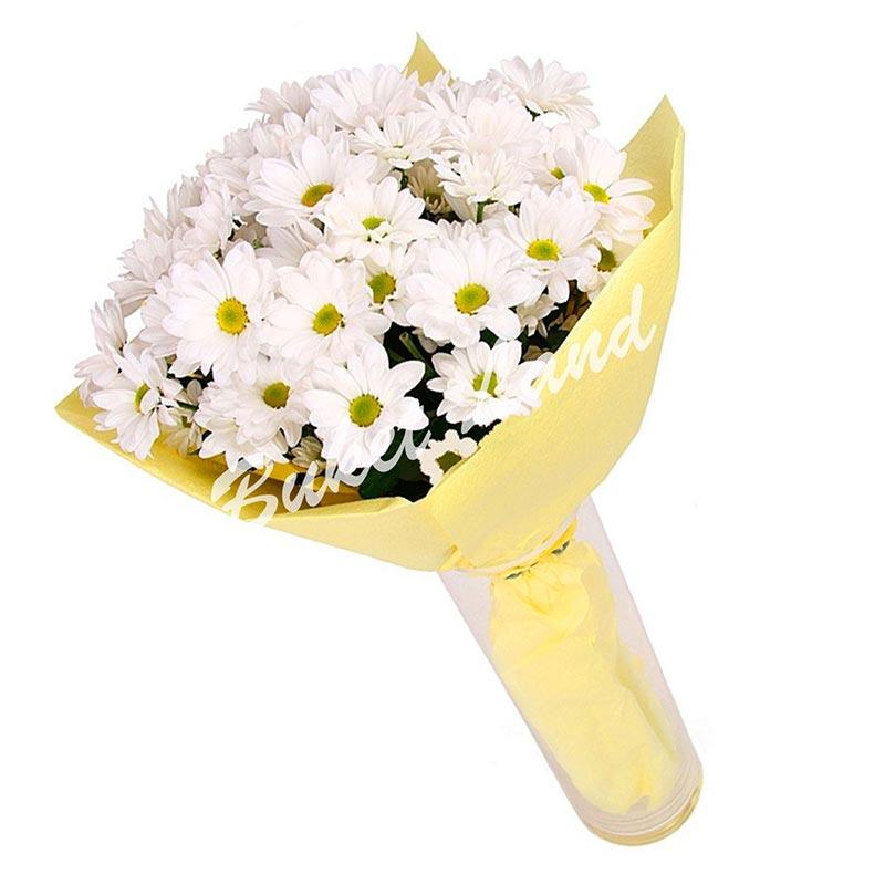 9 белых хризантем