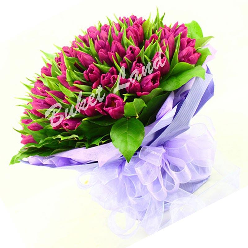 99 фиолетовых тюльпанов